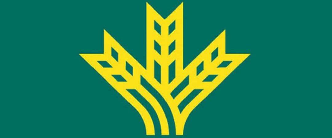 Logo del Banco Caja Rural La Vall San Isidro
